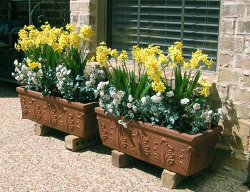 Occupazione di suolo pubblico fiori 39 proibiti 39 davanti casa multe ai cittadini molise network - Piante vaso da esterno con fiori ...