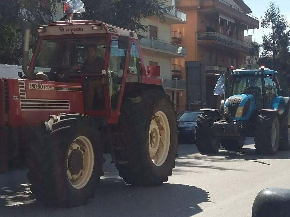 trattori4