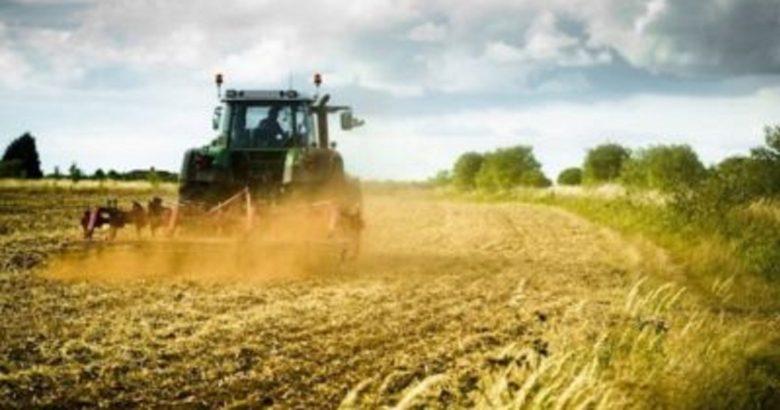 agricoltura molise