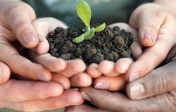 progetto agricoltura sociale