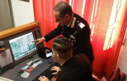 indagini truffe online