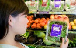 etichettatura agroalimentare