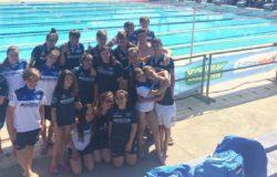 swim project venafro