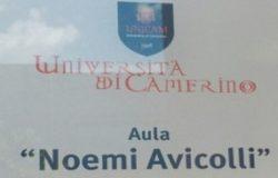Università Noemi Avicolli
