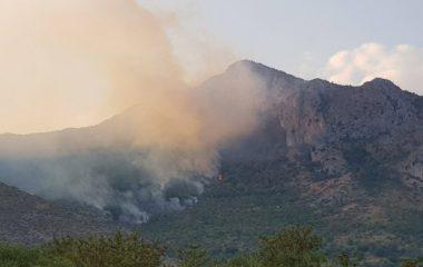 incendio monte corno Venafro