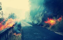 incendio vallecupa ceppagna