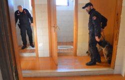 carabinieri scuola droga