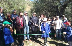 inaugurazione-Giardino-degli-Olivi-Patriarchi-d'Italia-Venafro