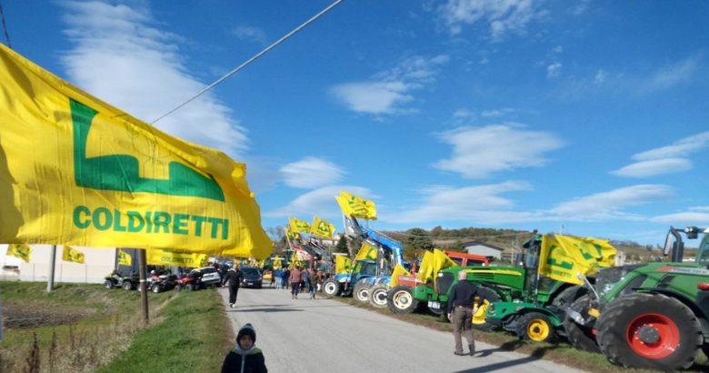 tripudio di bandiere gialle coldiretti campobasso