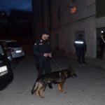 CRONACA - Maxioperazione antidroga, arresti e denunce. In manette anche la nipote di Carmine e Roberto Spada