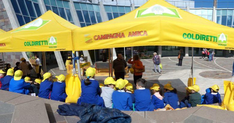 Agrimercato di Campagna Amica, Campobasso, giornata mondiale delle api