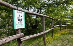 riserva oasi guardiaregia campochiaro