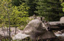 Formazione su processi innovativi per la conservazione delle piante