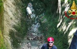 recupero cane Castellone di Bojano