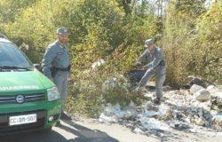 abbandono rifiuti forestali