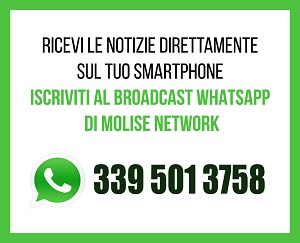 WhatsApp Molise Network