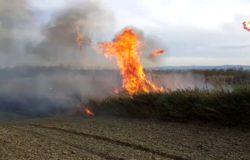 Incendio di sterpaglie e canne fumarie, giornata difficile per i Vigili del Fuoco
