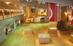 ISERNIA, Museo Nazionale del Paleolitico, DENTINO