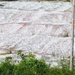 MALTEMPO - Tempesta di pioggia e grandine danni ingenti all'agricoltura