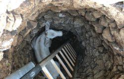 FILIGNANO, Vitello nel pozzo, Rocco