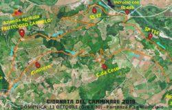 IO CAMMINO IN GAMBA - Domenica a Gambatesa per la Giornata nazionale del camminare
