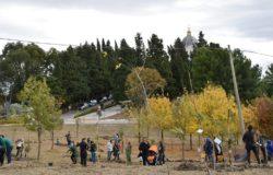 Montenero di Bisaccia, Un albero per ogni nato
