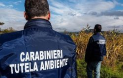 carabinieri tutela patrimonio