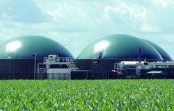 impianto biomasse