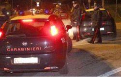 CRONACA - Carabinieri perquisizioni, sequestri e denunce