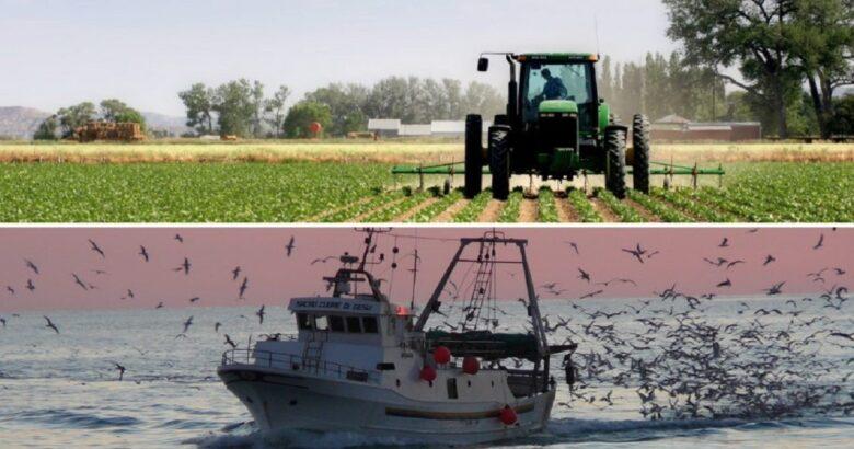 agricoltura e pesca