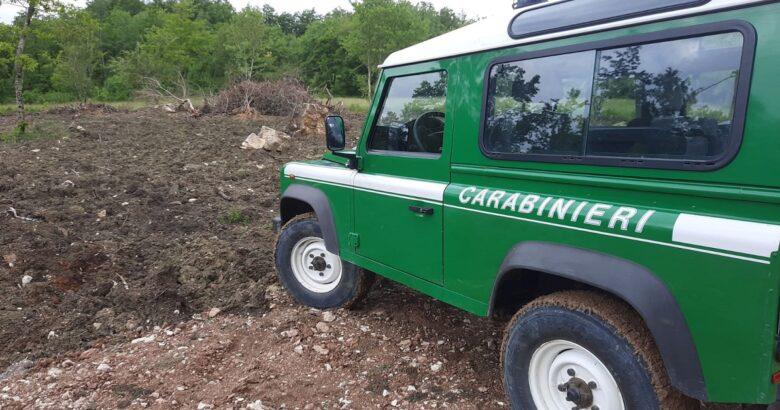 COLLEMELUCCIO, Abusivismo, area protetta, Carabinieri forestali, denunciano, imprenditore agricolo