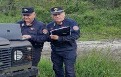 CRONACA - Carabinieri Forestali, sequestrati 60 ettari di boscoall'interno di un Sito d'Importanza Comunitaria