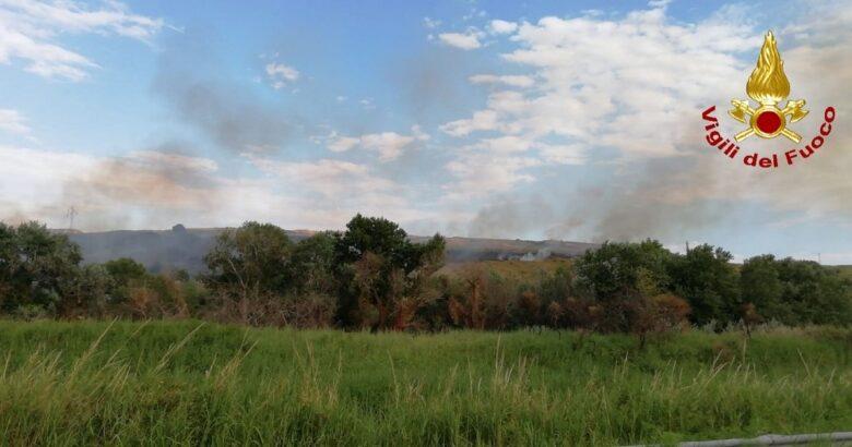 CRONACA - Incendio di macchia mediterranea e vegetazione, cinque squadre di vigili del fuoco al lavoro