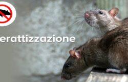 Ratti, derattizzazione