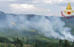 Ferragosto di incendi, bruciati oltre 5 ettari di bosco