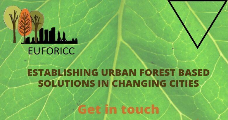 Foreste urbane in città, Campobasso, verde pubblico
