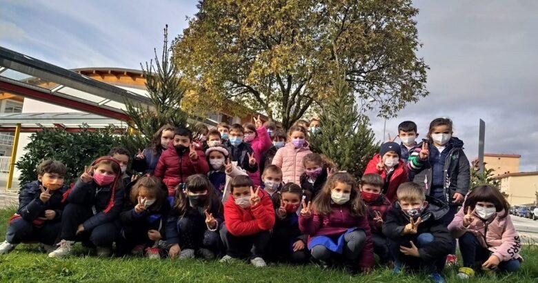 ISERNIA, albero di Natale, scuole, dono, Smaltimenti Sud