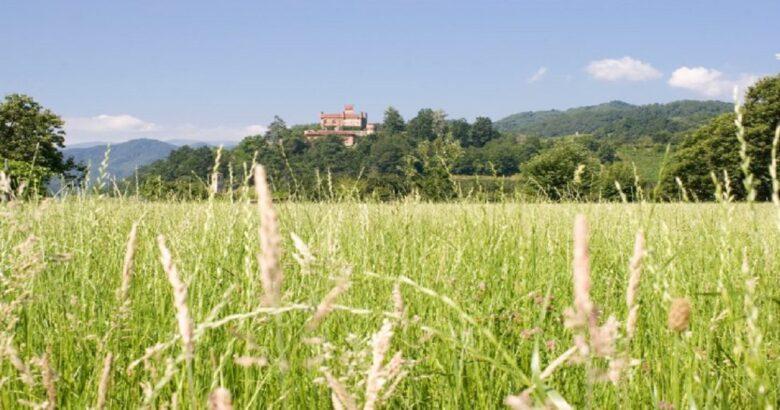 Agricoltura sociale, sfruttamento, terre incolte