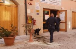 Cultura della legalità, Carabinieri, scuole, unità cinofile, antidroga
