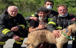 Vigili del Fuoco, cane in burrone, salvataggio, Monte Patalecchia, Castelpetroso