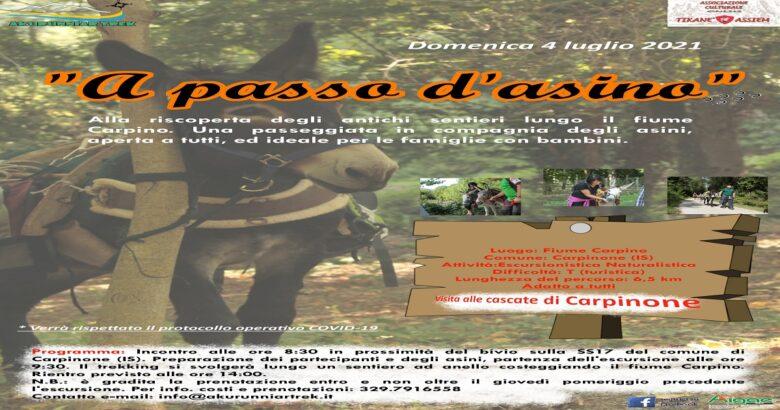 Trekking A passo d'asino_2021