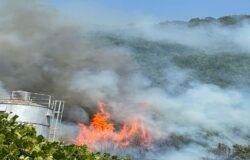 incendio, Monteroduni, fiamme, capannoni industriali