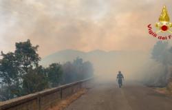 incendio Venafro, Vigili del fuoco